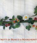 Frutti di Bosco & Margherite – Asta da Tenda